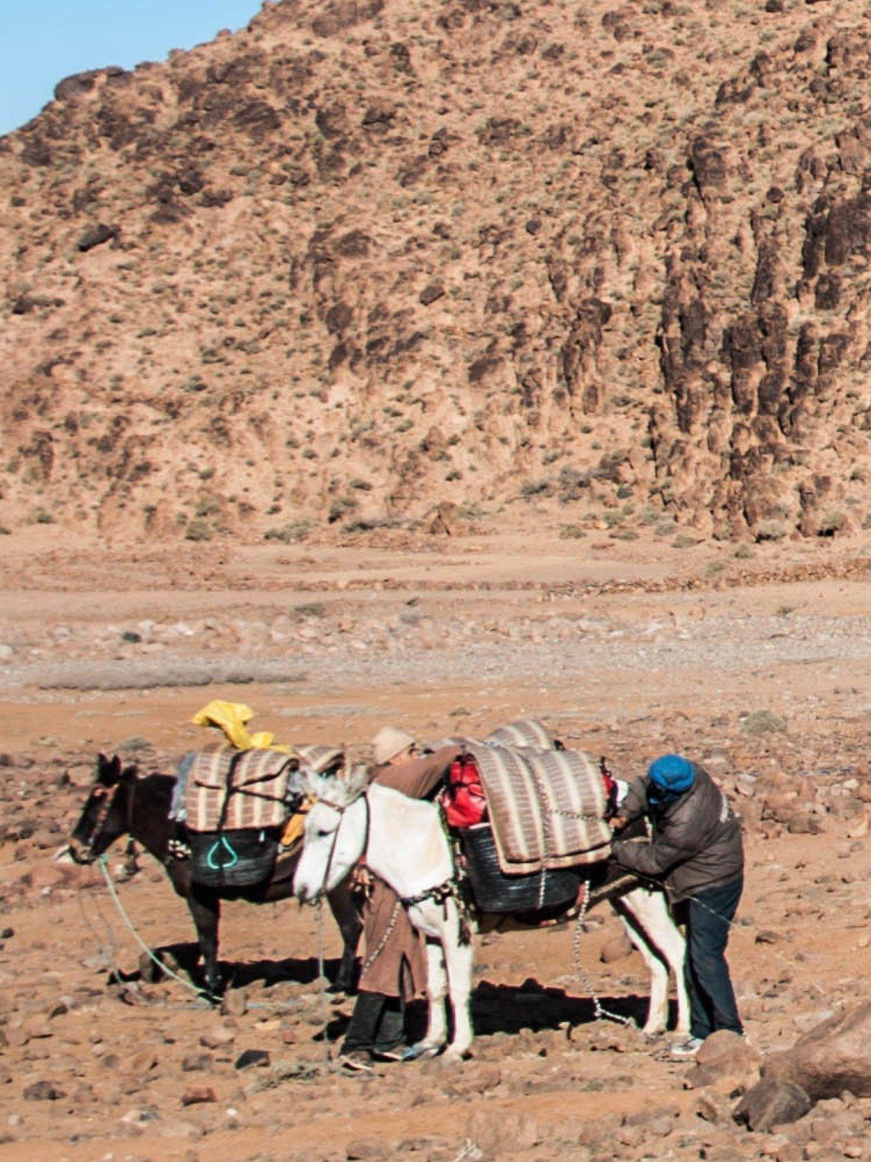 Trekking-trasporto-bagagli-Marocco