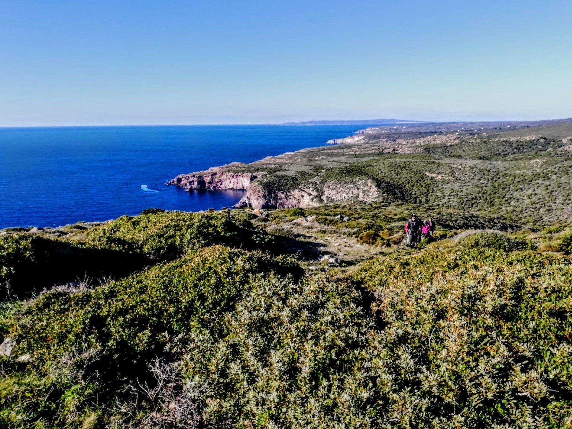 trekking-delle-isole-del-sud-sardegna-in-cammino-da-porto-sciusciau-a-capo-sperone