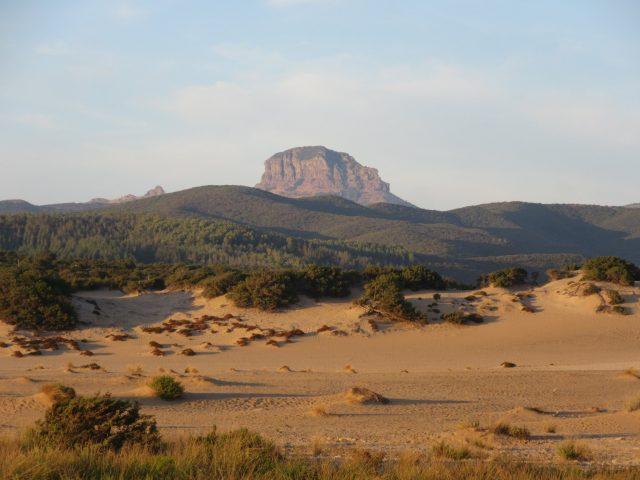dune-di-piscinas-spiaggia-lungo-il-trekking-in-sardegna
