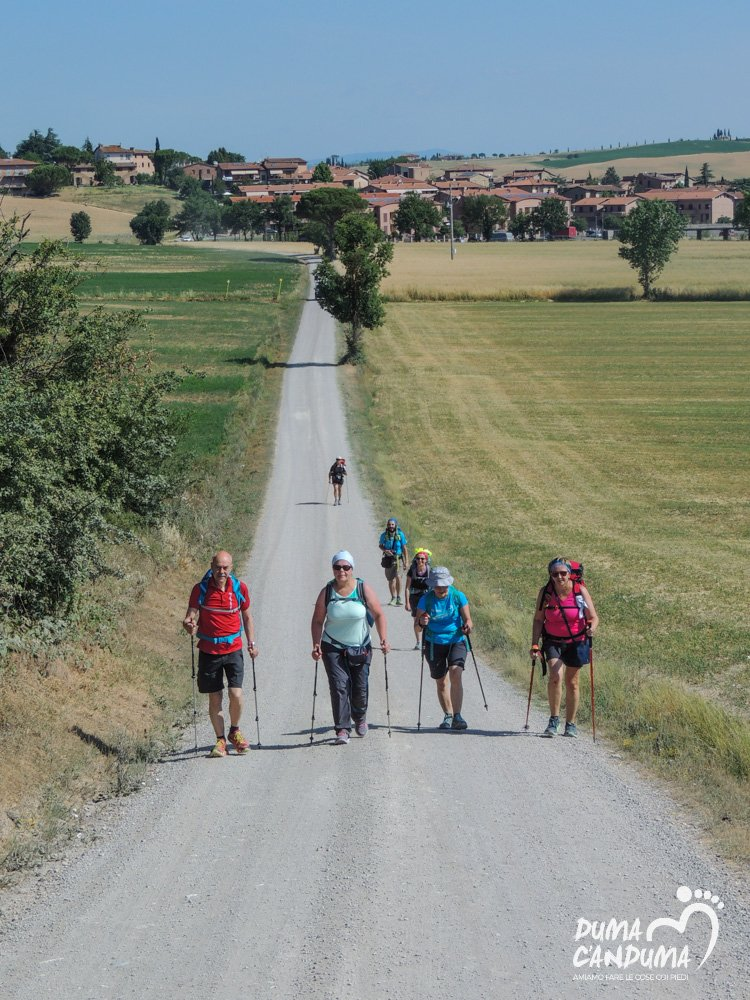 gruppi-trekking-via-francigena-toscana