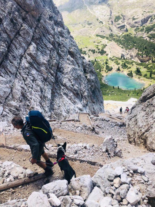 dolomiti-dog-trekking-in-discesa