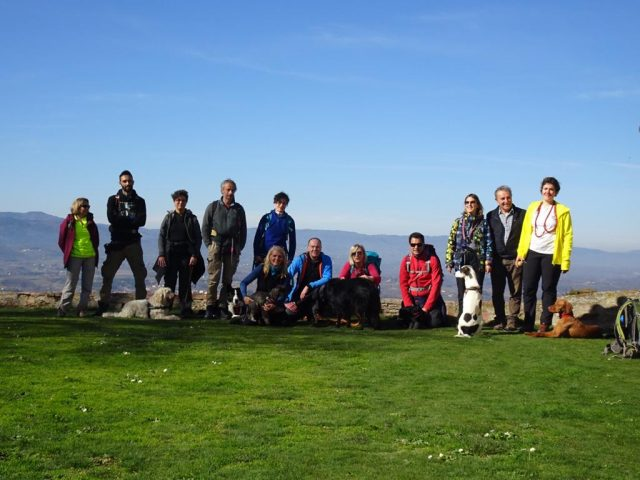 dog-trekking-valdarno-superiore-toscana