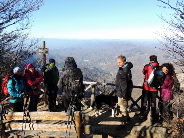 dog-trekking-toscana-foreste-casentinesi