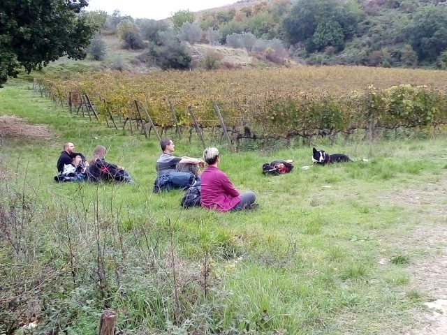 via-romea-del-chianti-toscana-dog-trekking