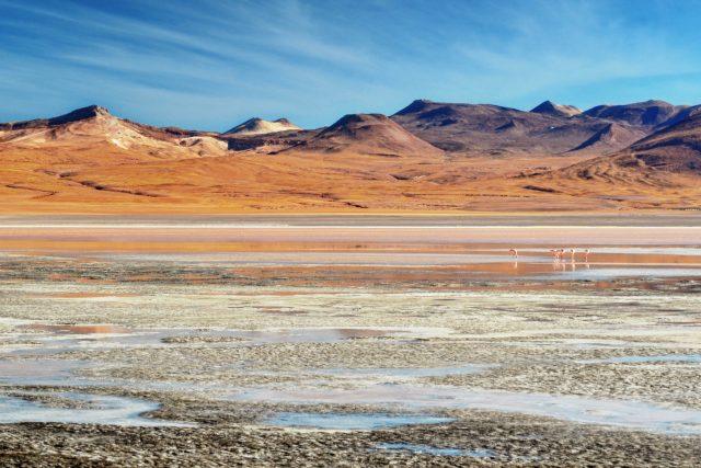 laguna-colorada-altopiano-andino-bolivia
