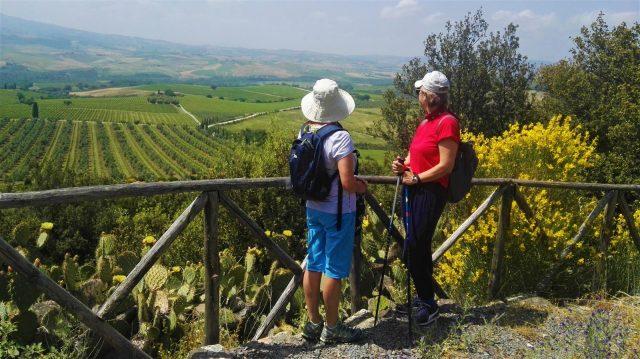 itinerari-a-piedi-val-dorcia-vigneti-montalcino